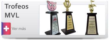Trofeos económicos de Madera