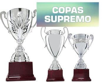TROFEOS COPAS METALICAS